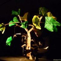 arbre_2-_benedicte_guillon_verne_avec_credit